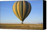 Kenya Canvas Prints - Low Hot Air Balloon Over Serengeti Canvas Print by Darcy Michaelchuk