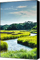 Lowcountry Canvas Prints - Lowcountry Creek Canvas Print by Drew Castelhano