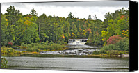 Michigan Waterfalls Canvas Prints - Lower Tahquamenon Falls 4 Canvas Print by Michael Peychich