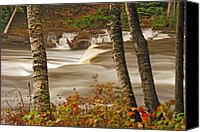 Michigan Waterfalls Canvas Prints - Lower Tahquamenon Falls 5 Canvas Print by Michael Peychich