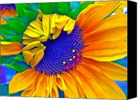 Sunflowers Canvas Prints - Lucky Canvas Print by Gwyn Newcombe
