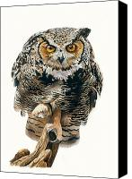 Great Painting Canvas Prints - Lunchtime - Great Horned Owl Canvas Print by Bob Nolin
