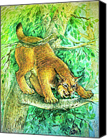 Natalie Berman Canvas Prints - Lynx Canvas Print by Natalie Berman