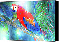 Parrots Canvas Prints - Macaw II Canvas Print by Arline Wagner