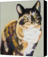 Pet Portrait Pastels Canvas Prints - Maggie Mae Canvas Print by Pat Saunders-White