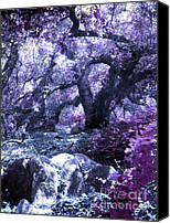 Magic Forest Canvas Prints - Magic Forest Canvas Print by Robert Ball