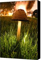 Long Pyrography Canvas Prints - Magic Mushroom Canvas Print by Jack Edjourian