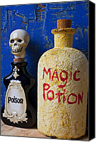 Poison Canvas Prints - Magic Potion Canvas Print by Garry Gay