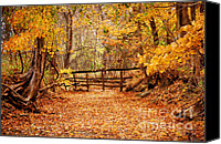 Creek Bed Canvas Prints - Magical Autumn Canvas Print by Cheryl Davis