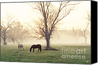 Daybreak Canvas Prints - Magical Morning Canvas Print by Scott Pellegrin