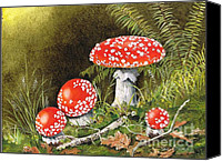 Forest Floor Painting Canvas Prints - Magical Mushrooms Canvas Print by Val Stokes