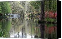 Swamp Canvas Prints - Magnolia Plantation Gardens Series II Canvas Print by Suzanne Gaff