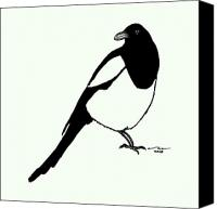 Artists Canvas Prints - Magpie Bird Canvas Print by Karl Addison