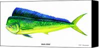 Bright Colors Canvas Prints - Mahi Mahi Canvas Print by Charles Harden