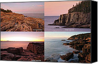 Otter Photo Canvas Prints - Maine Acadia National Park Seacoast Photography Canvas Print by Juergen Roth