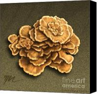 Mushroom Drawings Canvas Prints - Maitake Mushroom Canvas Print by Marshall Robinson