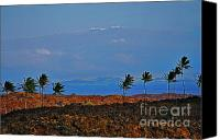 Mauna Kea Canvas Prints - Majestic Mauna Kea Canvas Print by Bette Phelan