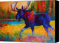 Wild Canvas Prints - Majestic Monarch - Moose Canvas Print by Marion Rose