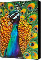 Exotic Bird Tapestries - Textiles Canvas Prints - Majestic Peacock Canvas Print by Daniel Jean-Baptiste
