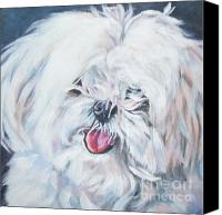 Maltese Canvas Prints - Maltese Canvas Print by Lee Ann Shepard