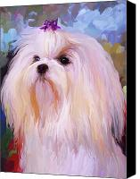 Maltese Canvas Prints - Maltese Portrait Canvas Print by Jai Johnson