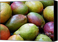 Mangoes Canvas Prints - Mangoes Canvas Print by Methune Hively