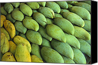 Mangoes Canvas Prints - Mangoes Sold At A Market Canvas Print by Todd Gipstein