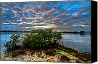 Florida Bridge Canvas Prints - Mangrove Sky Canvas Print by Debra and Dave Vanderlaan