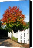 Alley Canvas Prints - Maple and Picket Fence Canvas Print by Olivier Le Queinec