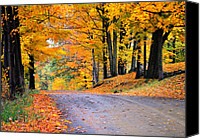 Country Dirt Roads Canvas Prints - Maples of Rupert Vermont Canvas Print by Thomas Schoeller
