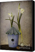 Still Life Digital Art Canvas Prints - March Canvas Print by Priska Wettstein