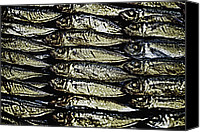 Signed Canvas Prints - Market Fish Canvas Print by Skip Nall