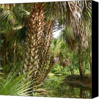 Lake Water Trees Framed Prints Digital Art Canvas Prints - Marsh Bend Park Palms Canvas Print by Sheri McLeroy