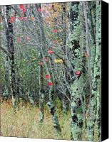 Trees Canvas Prints - Marsh Trees Canvas Print by Juergen Roth