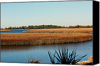 Kiawah Island Canvas Prints - Marsh View Canvas Print by Rosanne Jordan