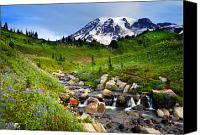 Mt. Rainier Canvas Prints - Martha Creek Wildflowers Canvas Print by Mike  Dawson