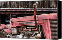 Red Tractors Canvas Prints - Massey Ferguson Canvas Print by JC Findley