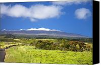 Mauna Kea Canvas Prints - Mauna Kea Canvas Print by Peter French - Printscapes