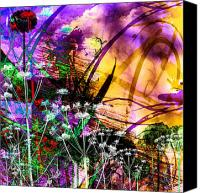 Other World Canvas Prints - Meadow Canvas Print by Steve Thorpe