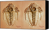 Machine Reliefs Canvas Prints - Mecha-Trilobite 4 - Stereogram 3D Canvas Print by Baron Dixon