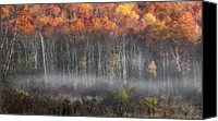 Morning Canvas Prints - Meeker Swamp Canvas Print by Bill  Wakeley