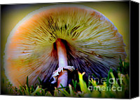 Diners Canvas Prints - Mellow Yellow Mushroom Canvas Print by Karen Wiles