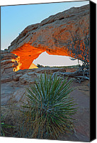 Mesa Arch Canvas Prints - Mesa Arch bei Sonnenaufgang Canvas Print by Rainer Grosskopf