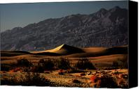 Death Valley National Park Canvas Prints - Mesquite Flat Sand Dunes Death Valley - Spectacularly abstract Canvas Print by Christine Till