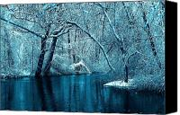 Hovind Canvas Prints - Michigan Winter 14 Canvas Print by Scott Hovind