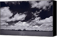 Lake Geneva Wisconsin Canvas Prints - Midwest Corn Field BW Canvas Print by Steve Gadomski