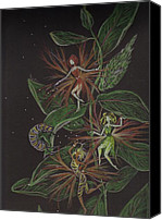 Fairies Drawings Canvas Prints - Milkweed Moment Canvas Print by Dawn Fairies