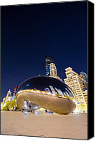Distortion Canvas Prints - Millennium Bean   Canvas Print by Drew Castelhano
