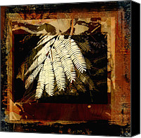 Mixed Media Digital Collage Canvas Prints - Mimosa Leaf Collage Canvas Print by Ann Powell