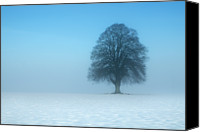 Solitude Canvas Prints - Minimalist Winter Canvas Print by David Augustin